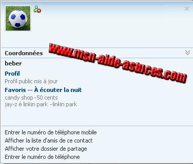 Windows Live Messenger 8.1 Wlm811